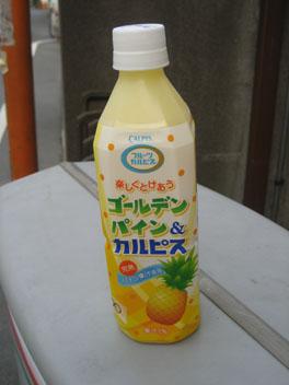IMG_5077カルピス.JPG